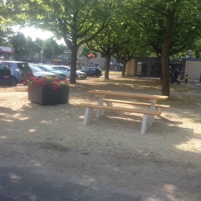 picknicktafel Van Foreestplein